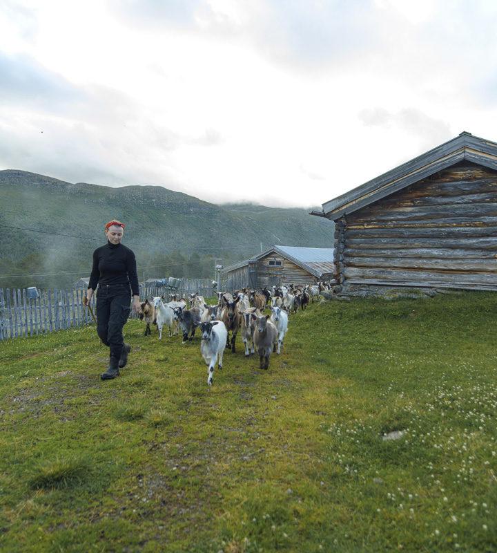Sæter i Skjåk